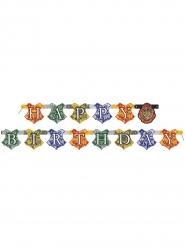 Grinalda Happy Birthday Harry Potter™