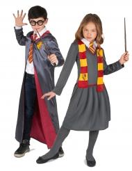 Disfarce de casal aprendiz de feiticeiro criança