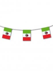 Grinalda de plástico México 5 m