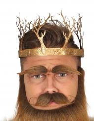 Coroa rei medieval dourada adulto