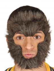 Pêlos para rosto lobisomem adulto