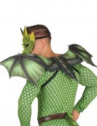 Asas dragão