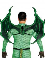 Asas dragão luxo