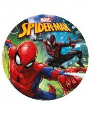 Folha de açúcar Spiderman™