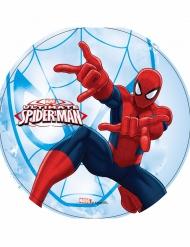 Disco ázimo Ultimate Spiderman™ 21 cm