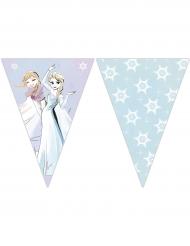 Grinalda 9 bandeirolas Frozen™