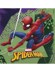 20 Guardanapos de papel Spiderman™ 33 x 33 cm