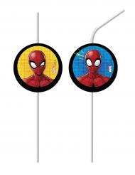 6 Palhinhas Spiderman™