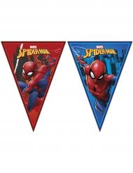 Grinalda bandeirolas Spiderman™ 2.3 x 25 cm