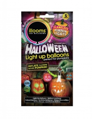 5 Balões led illooms™ abóbora