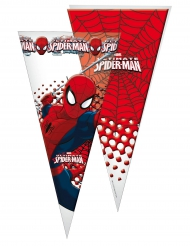 10 Sacos de festa Spiderman™