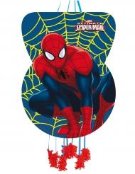 Pinhata de cartão Spider-Man™