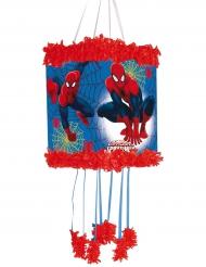 Pinhata Spider-Man™ 20 x 30 cm