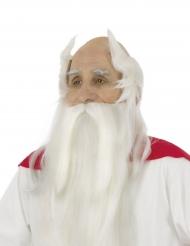 Peruca e barba Panoramix™ - Asterix e Obelix