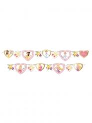 Grinalda de cartão premium Princesas Disney™