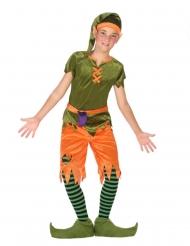 Disfarce duende dos bosques menino