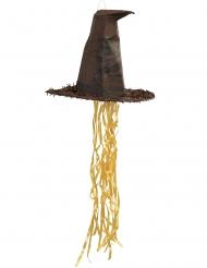 Pinhata Chapéu Seletor Harry Potter™ 45 cm