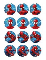 12 Decorações em ázimo para biscoitos Spiderman™ 5.8 cm