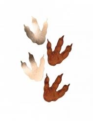 6 Pegadas de dinossauro castanho e dourado 15.5 x 13.5 cm