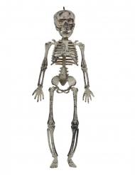 Decoração para pendurar esqueleto 30 cm