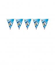 Grinalda de bandeirolas de cartão Sonic™ 3 m x 30 cm