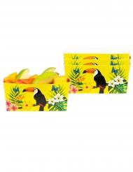 4 Tijelas de cartão tucano amarelos 7 x 7 x 14 cm