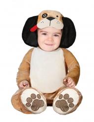Disfarce pequeno cão castanho bebé