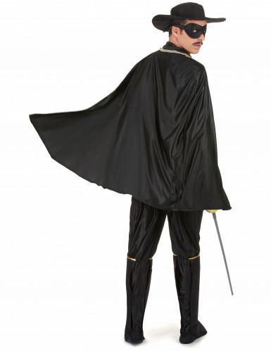 Disfarce de Zorro-2