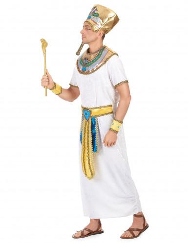 Disfarce de rei egípcio adulto -1