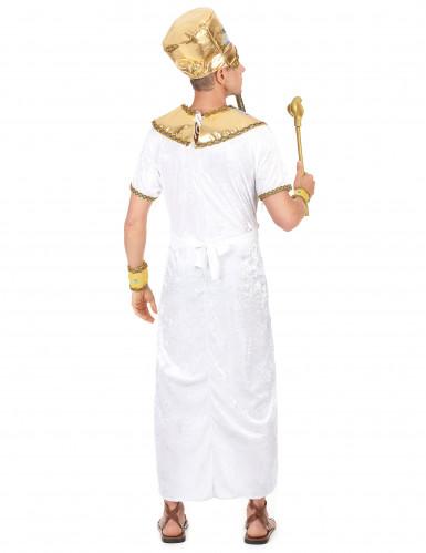 Disfarce de rei egípcio adulto -2