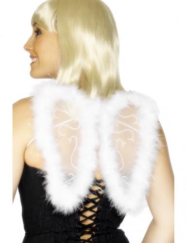 Asas de anjo brancas adulto