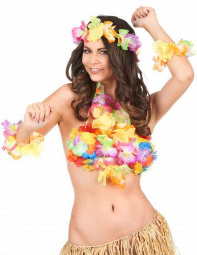 Conjunto Havai