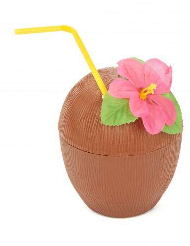 Coco Havai