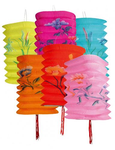 Conjunto de 12 lampiões chineses