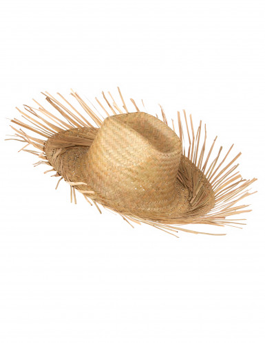 Chapéu de palha-1