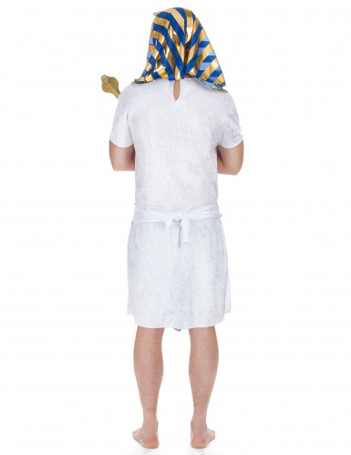 Disfarce faraó egípcio para homem-2