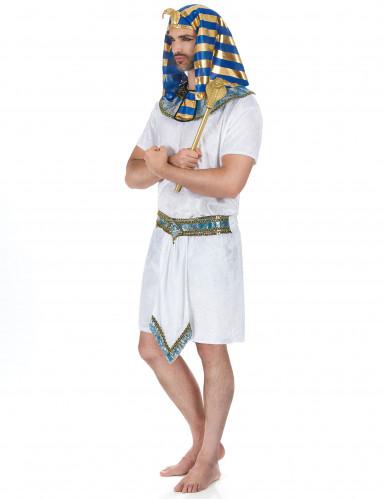 Disfarce faraó egípcio para homem-1