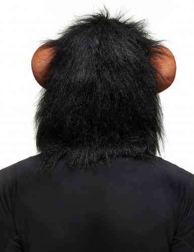 Máscara de macaco adulto-1