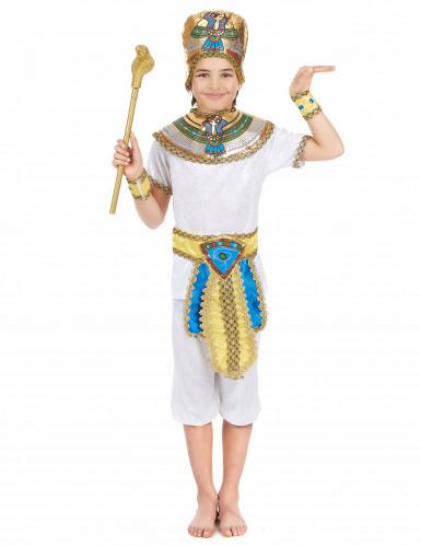 Disfarce egípcio rapaz