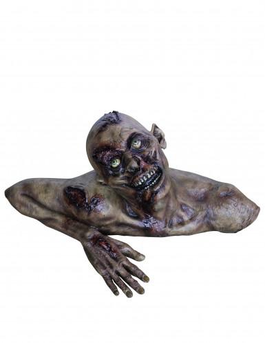 Busto de zombie tamanho real Halloween