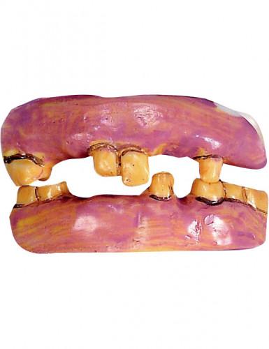 Dentura dentes velhos