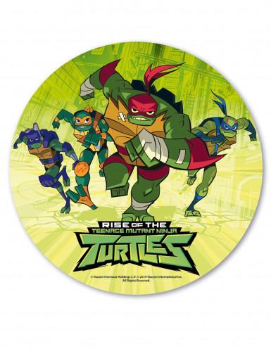 Disco Comestivel Tartarugas Ninja 20 Cm Decoracao Animacao