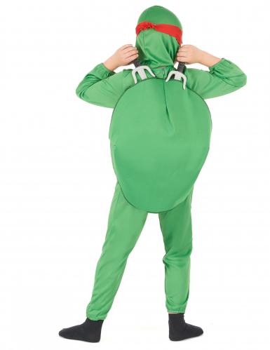 Disfraces tartaruga menino-2