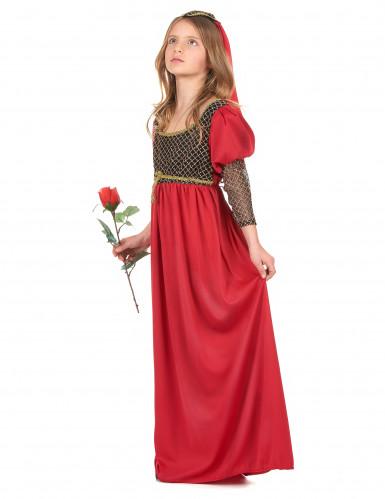 Disfarce medieval menina-1