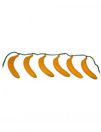 Cinot de bananas adulto