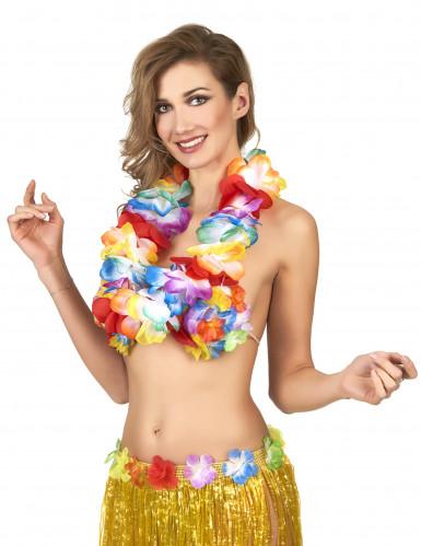 Colar Havaí multicores luxo-1