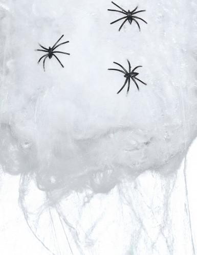 Falsa teia de aranha branca Halloween