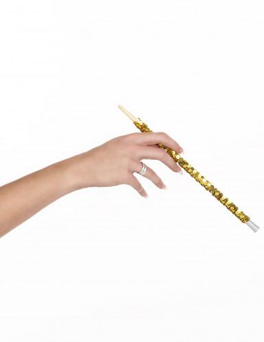 Porta-cigarros Dourado para Adultos-1