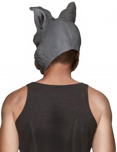 Máscara de látex coelho adulto-1