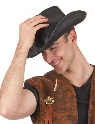 chapéu de cowboy preto para adulto-1